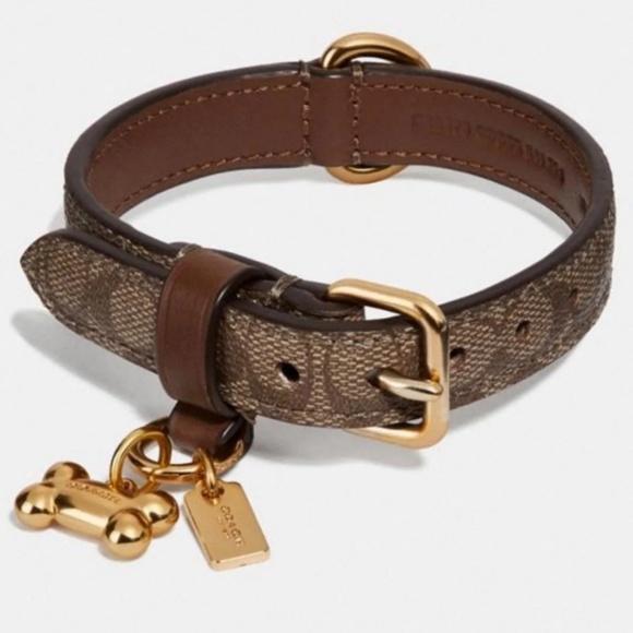a55e8107044 COACH DOG COLLAR W/GOLD CHARMS